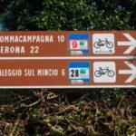Villa Boninsegna - Biciclette - Soggiorno a Verona, degustazioni ed eventi